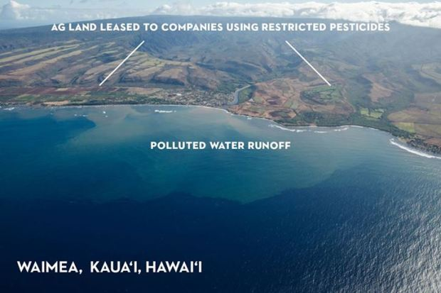 Pesticide Runoff from GMO fields Kauai